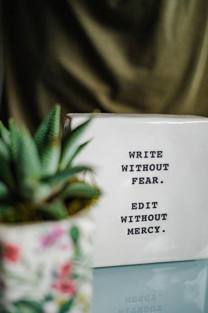 Behind a small plant reads the words on a white block - Write without fear. Edit without mercy.